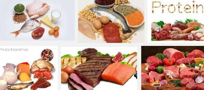 La Importancia De Las Proteinas Para Bajar Peso. Dietas..